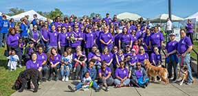 NAMI walk, MHC employees, fundraiser